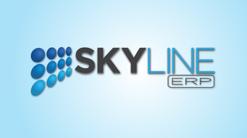 skyline erp – mai mult decat un program de contabilitate